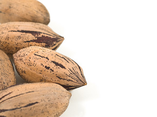 Pecan nuts on white background.