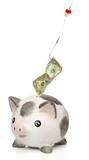 Stealing money from a piggy bank poster