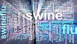 Swine flu wordcloud glowing poster