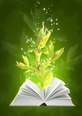 Book of ground magic