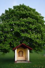 Kapelle mit Kastanie