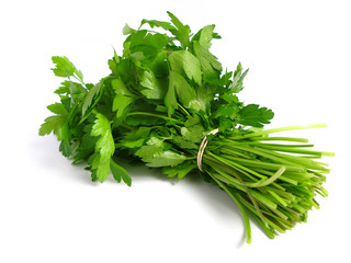 Bouquet of parsley on white background.