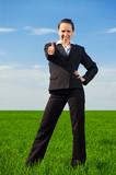 prosperous businesswoman poster