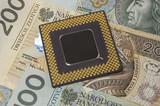 processor on polish money poster