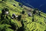 Terraced Fields, Annapurna Region, Nepal poster