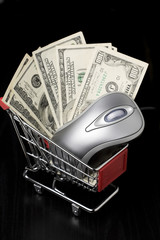 Mouse and $100 dollar bills in a shopping cart