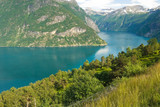 Awesome summer fjord
