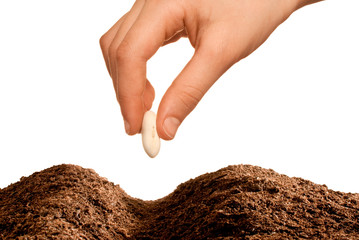 hand seeding