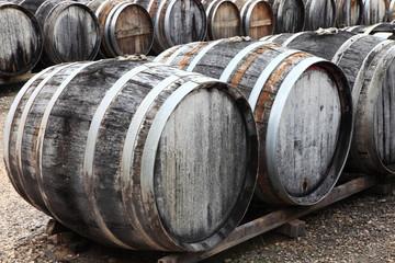 Wermut 80 Jahre gelagert, Weinfässer, Languedoc Roussilion