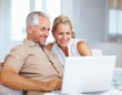 A happy aged couple surfing on a laptop