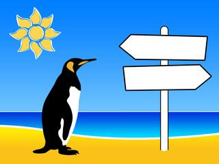 Pinguino al mare