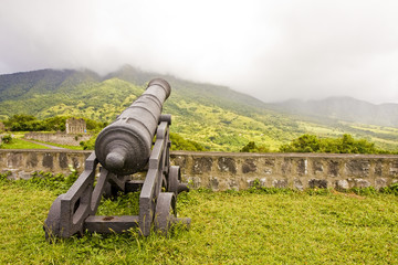 Cannon at Cloudy Mountains