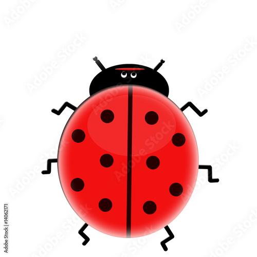 Tuinposter Lieveheersbeestjes Sweet lady bug isolated on white