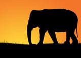 Silhouette di elefante
