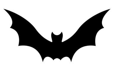 Chauve-Souris / Bat