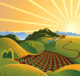 Fototapety Summer solar rural landscape with a sunset and mountains