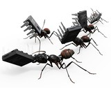 Ants Carrying Microchips poster