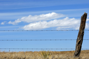 Barbed Wire Fence Against a Country Sky