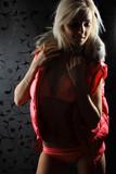 nightclub go-go style dancer is posing poster