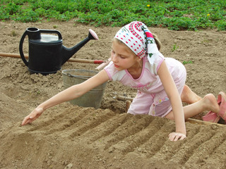 young farmer preparing vegetable bed for sowing