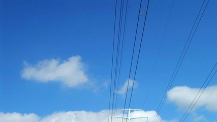 Power Lines In Country