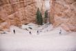 Bryce Canyon, wunderbare Felsenformationen, Wanderpfad