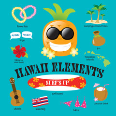 Hawaii Elements Vector Set