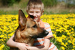 Boy, dog and yellow meadow.