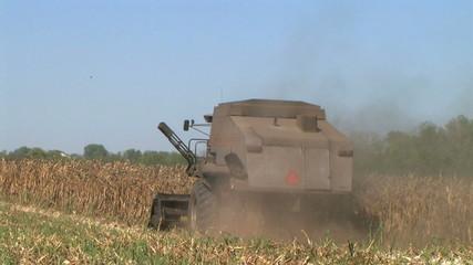 Combine Harvesting Corn 03