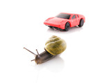 Snail versus sports car