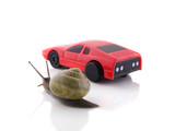 Snail versus sports car poster