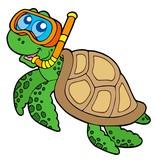 Fototapety Sea turtle snorkel diver