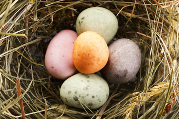 chocolate eggs in the nest