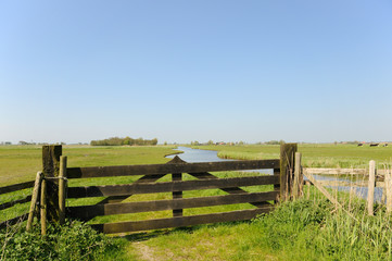 Dutch landscape in polder