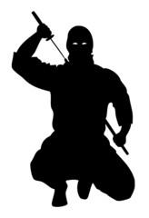 Ninja avec Sabre