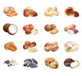 Set of colorful isolated nuts and seeds for calorie table poster