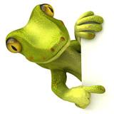 Fototapety Gecko avec un panneau blanc