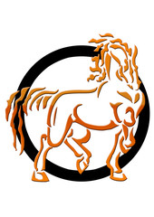 Fire-Horse