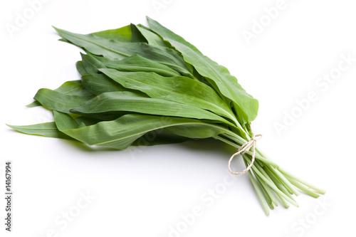 Bärlauch - frisches Gemüse im Frühsommer
