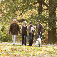 A family group walking in autumn time