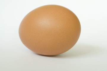 Brown egg with soft shadow