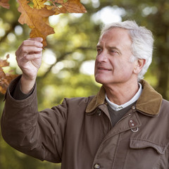 A senior man admiring an autumn leaf
