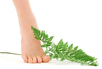 female foot with green fern leaf