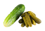 fresh and mild-cured cucumbers poster