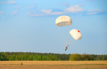 single parachute jumper landing with two canopies