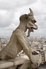 Paris Gargoyle in Notre Dame Paris