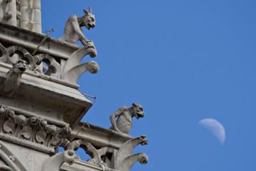 Paris Gargoyles in Notre Dame Paris