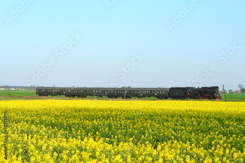 Steam retro train passing the rapeseed field