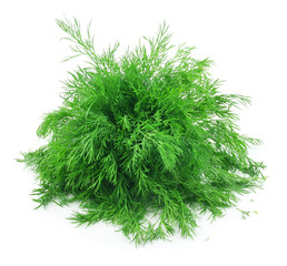 Bunch of Ripe Dill Isolated on White