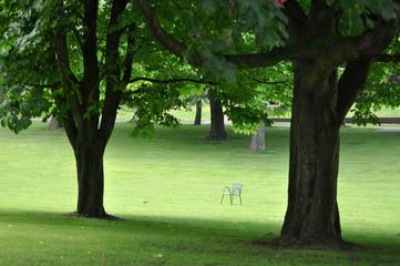 Sich entspannen im Park